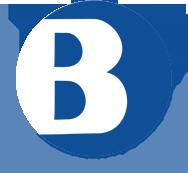 Bayview Technologies Inc